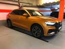 Rent-a-car Audi Q8 50 TDI Quattro in La Condamine, photo 1